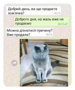 FB_IMG_1630251965164.jpg